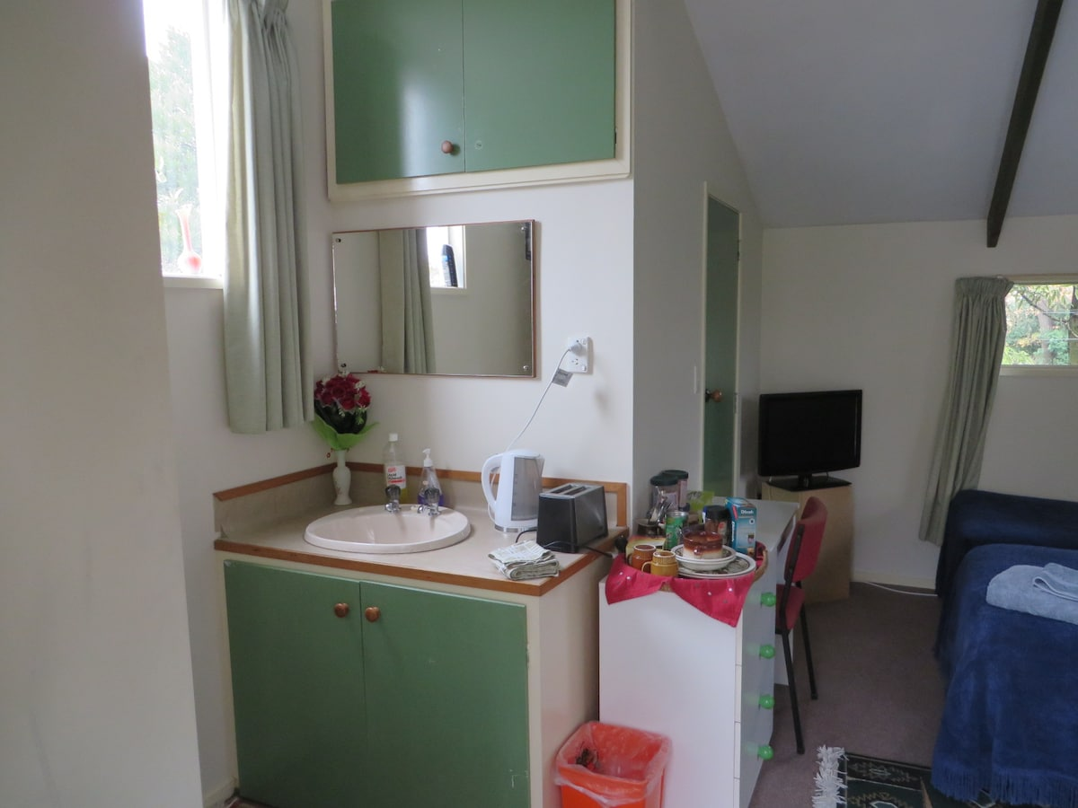 The kitchenette area ( not showing are a microwave and small fridge)