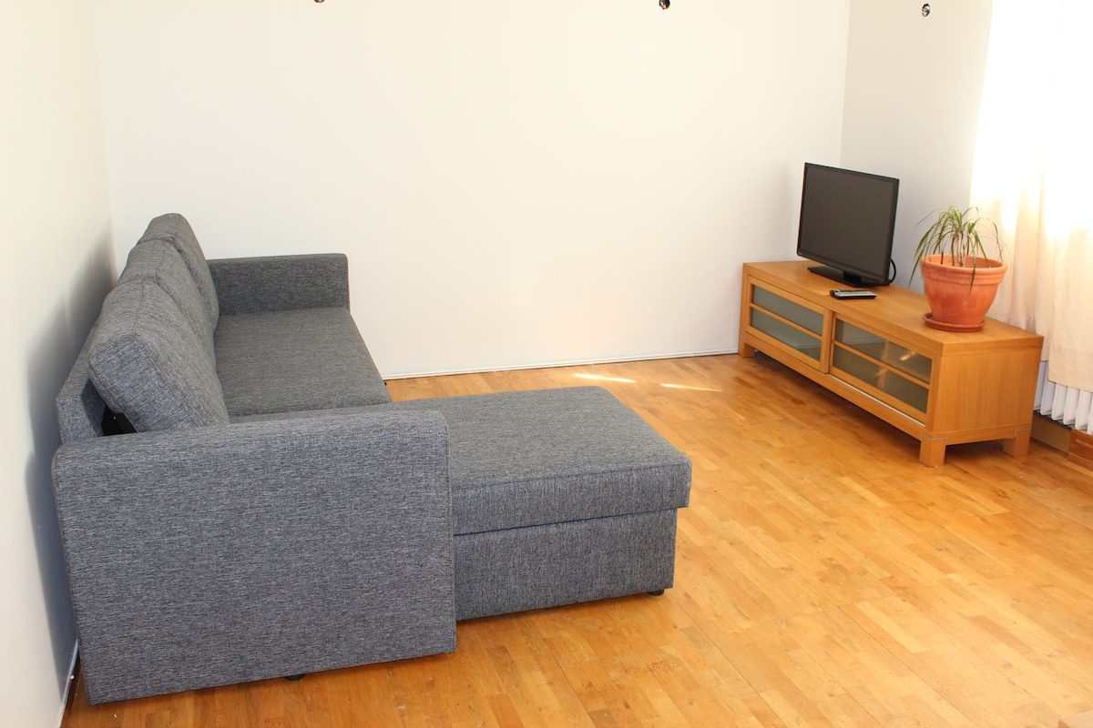 Nice apartment for family/friends