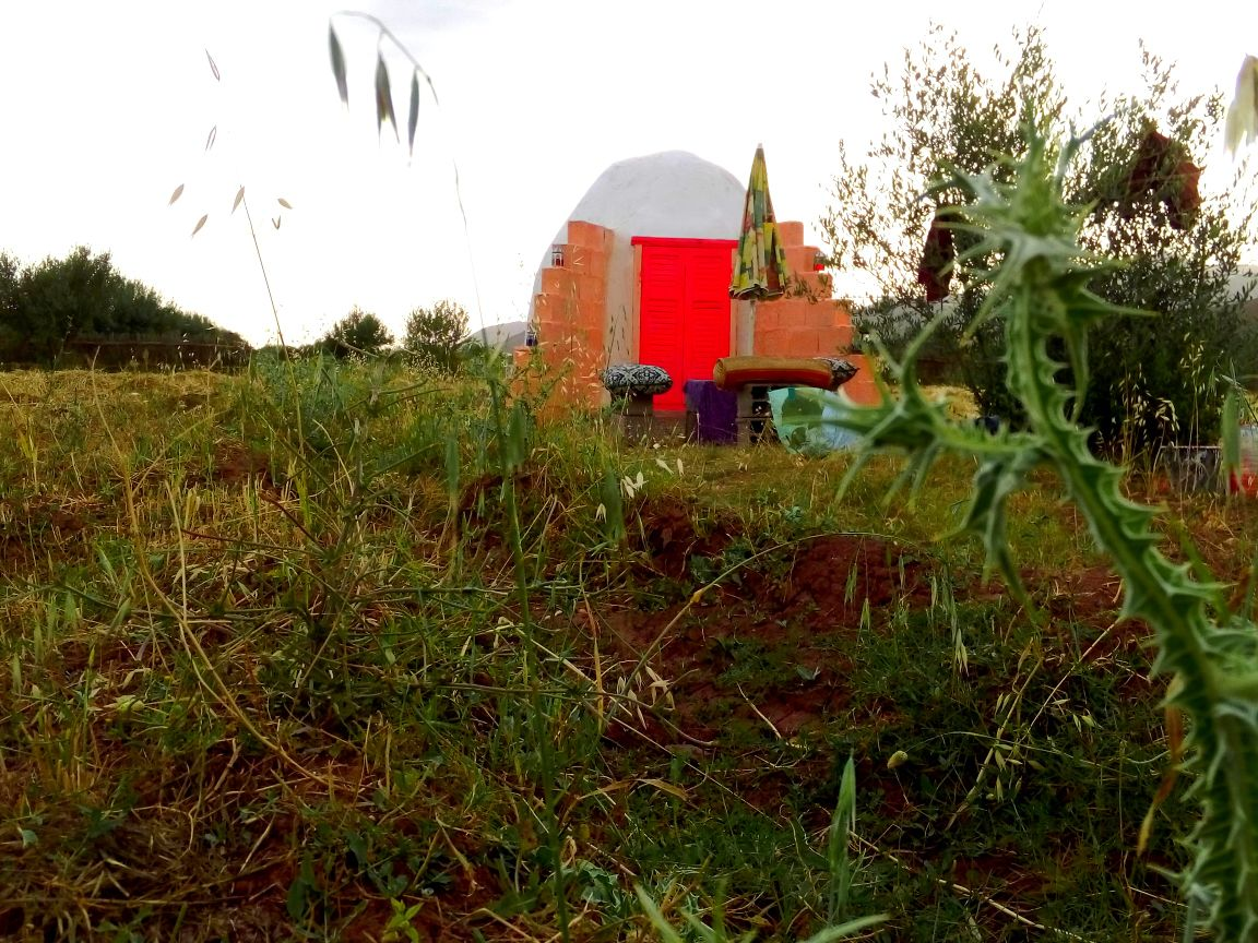 Magic domes /nature BnB