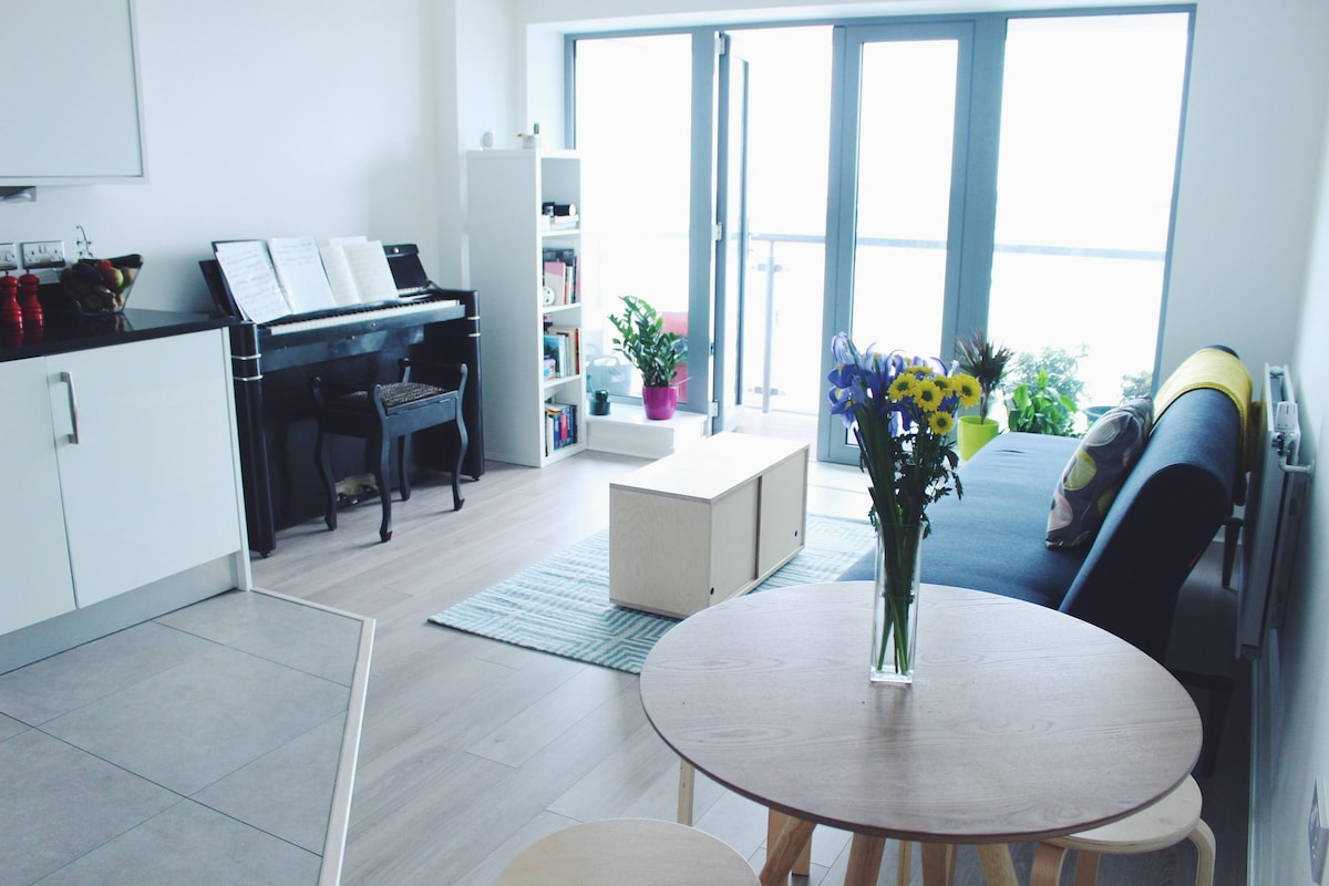 Modern room in the heart of Bow