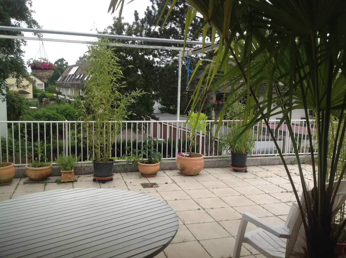 Appartment with sunny terrace