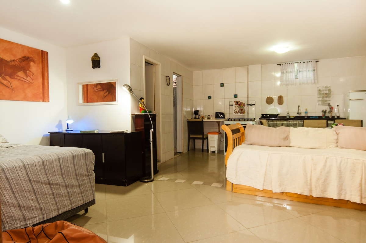 Season or daily home rentals in Rio