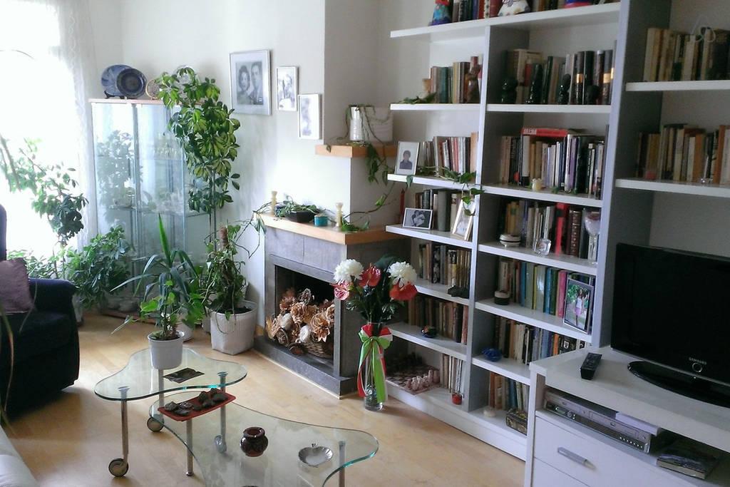 Nice apartment near the center 1