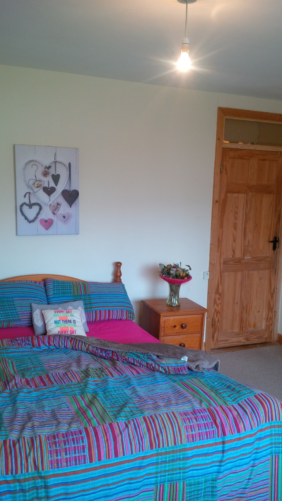 Sunny spacious room in Dundrum