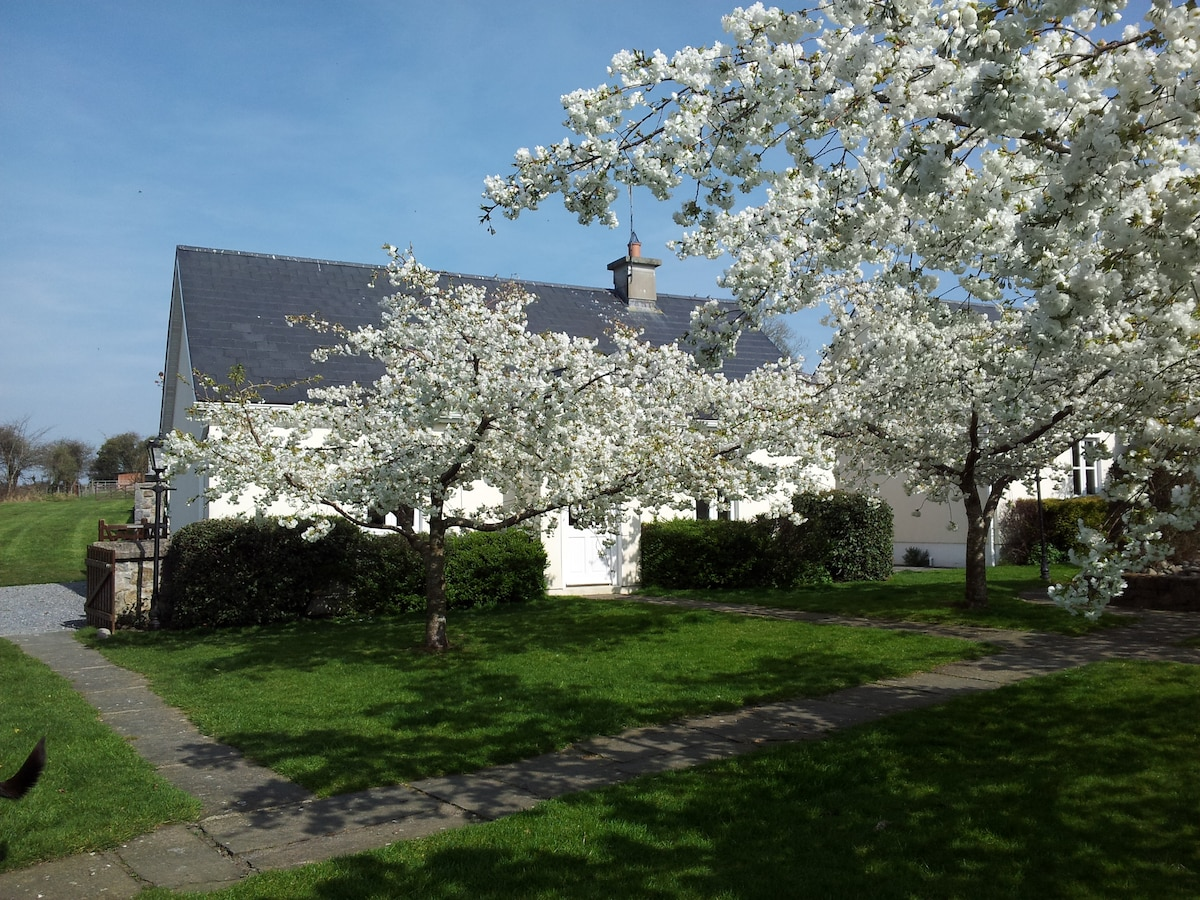 Spring Blossom at the cottage