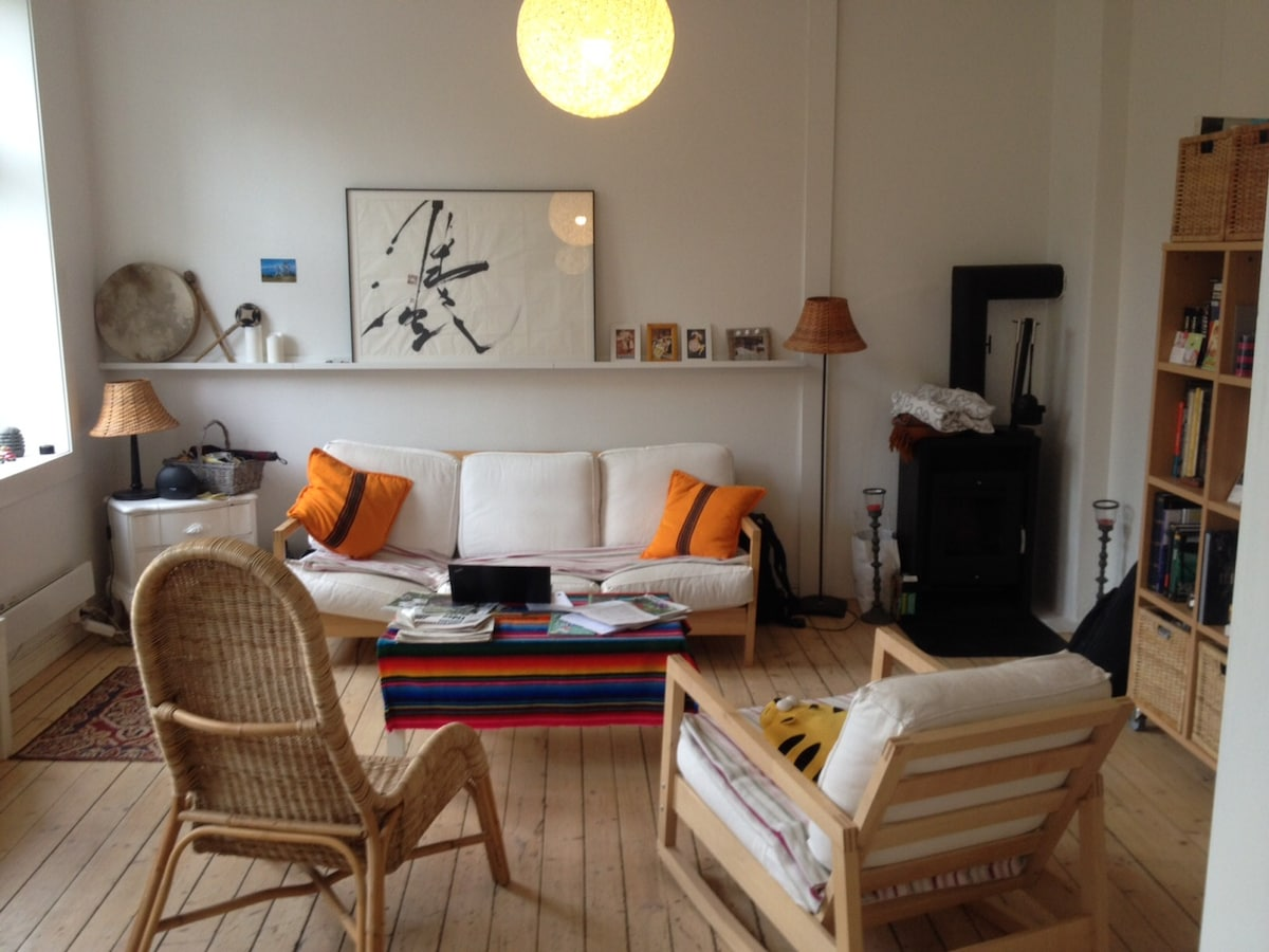 Central & Spacious 2 rooms in Løkka