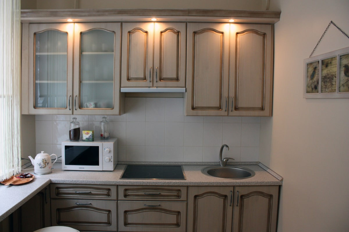 Fully equipped kitchen: cooking plates, microwave oven, kettle, large fridge