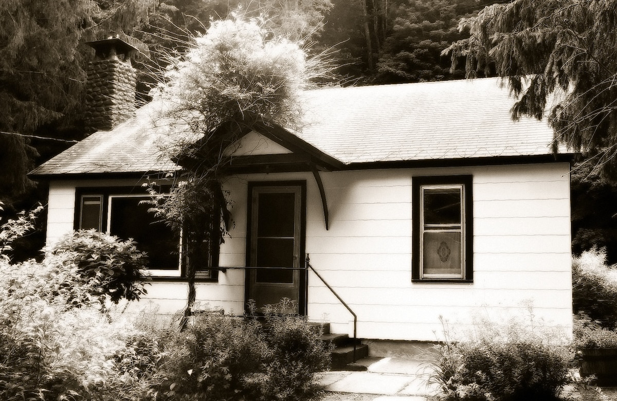 Faerie Lane Cottage, Pets Welcome