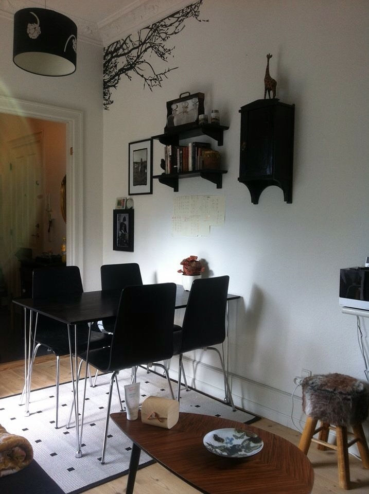 Cozy studio apartment central CPH