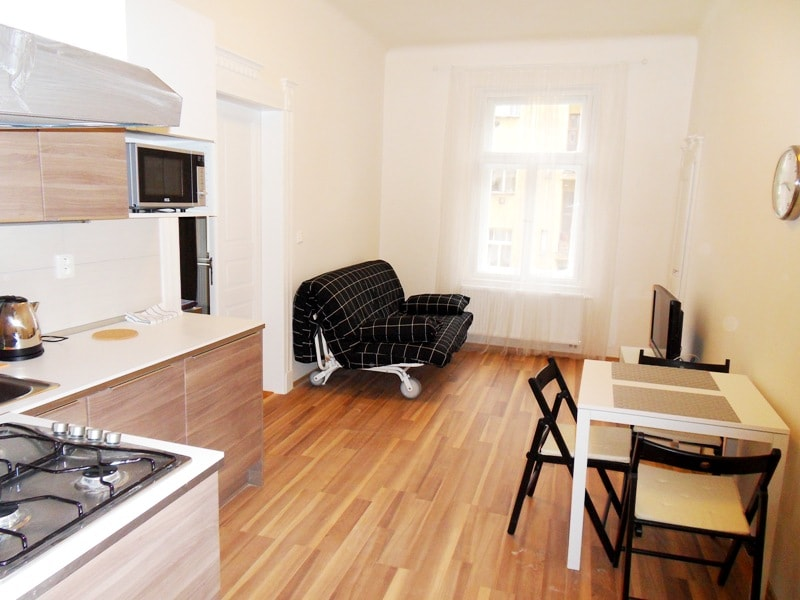 Comfy one bedroom apt in Prague 2