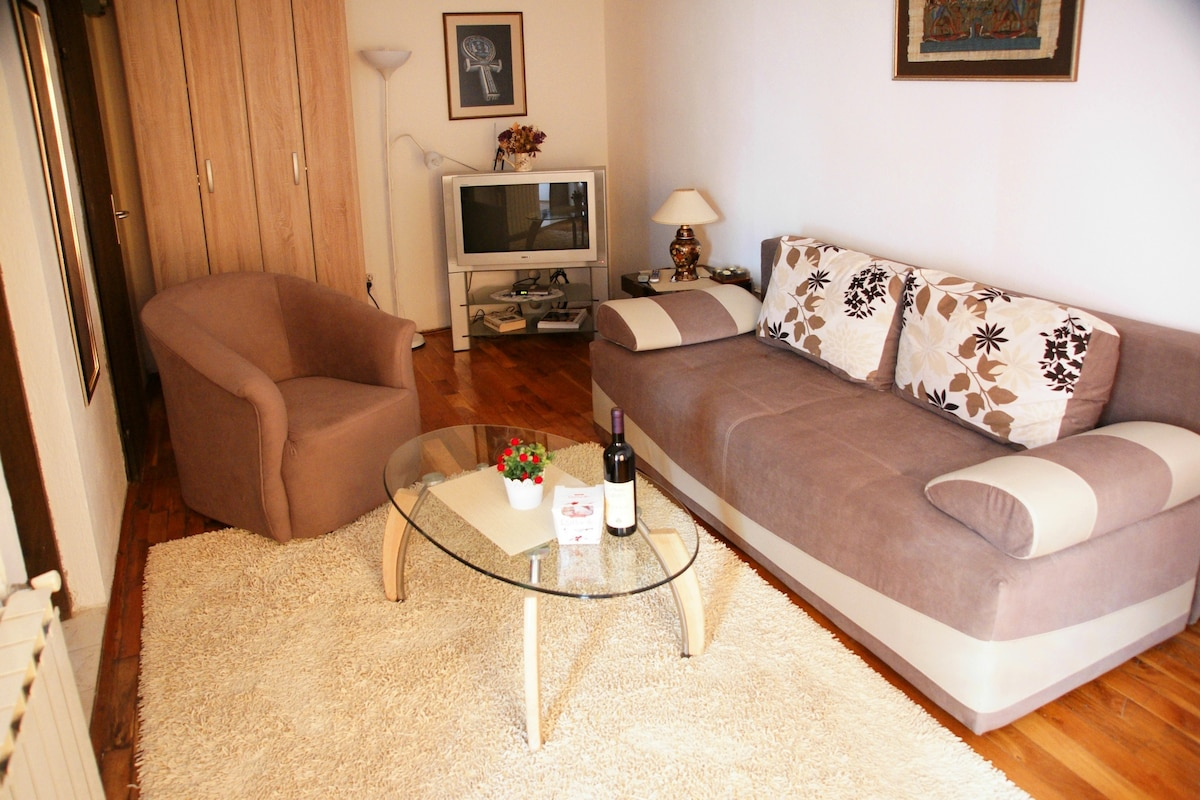 Budva Top Hill Apartment - See View