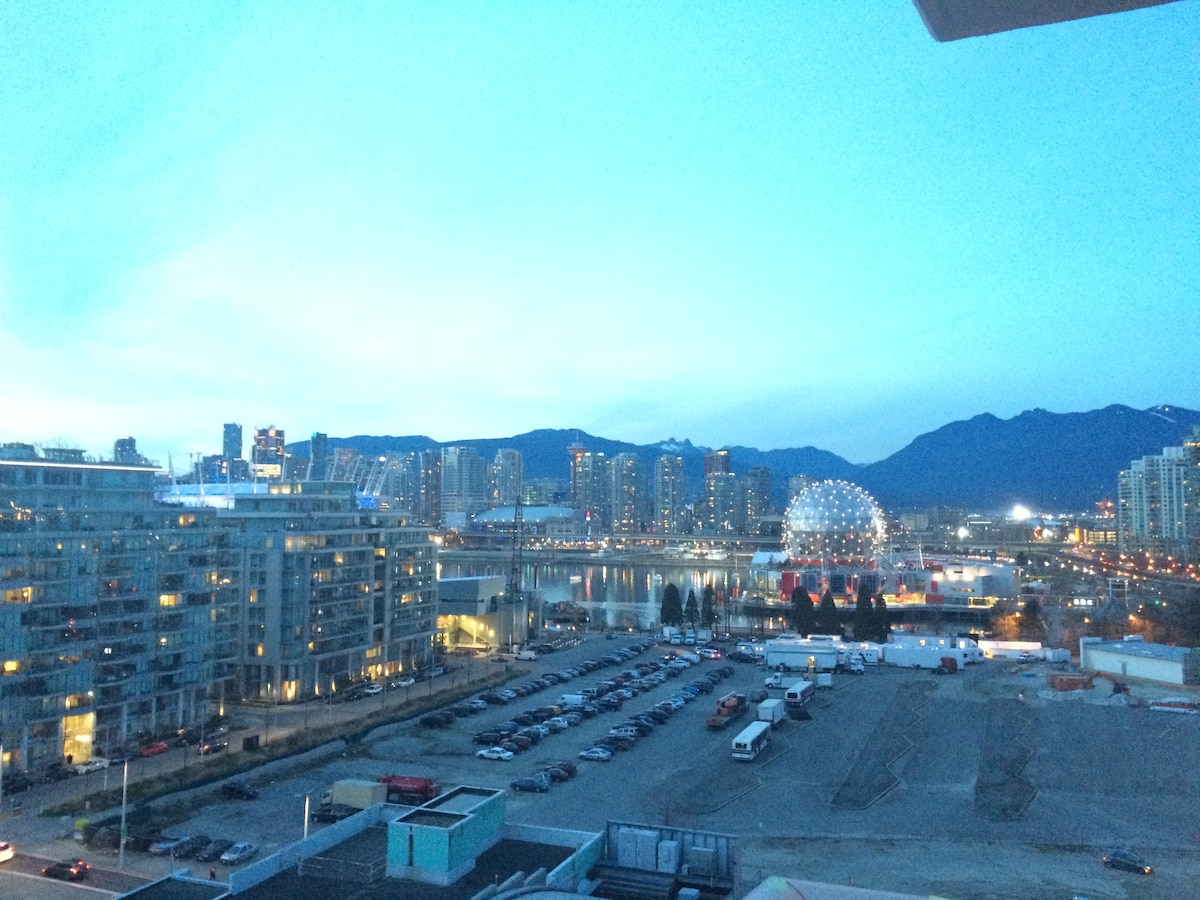One Bedroom in Olympic Village