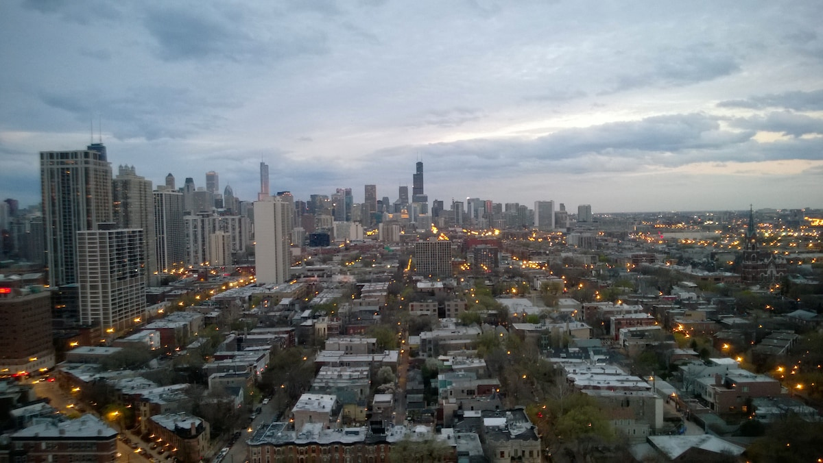 Lincoln Park Zoo  Downtown view