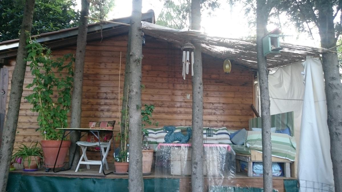 Terrasse d'été Summer terrace