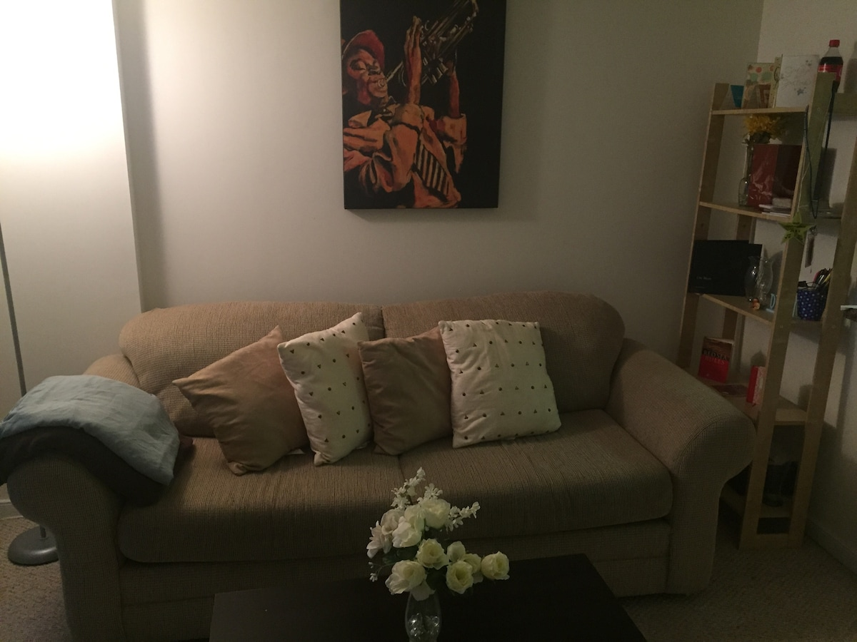 Comfy Space Waiting For You In DC!