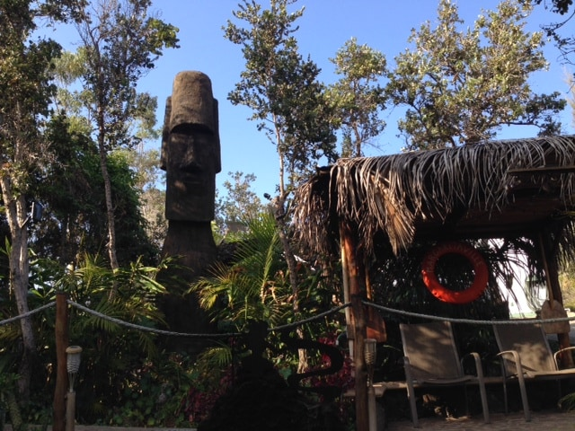 Artist's Home by Volcano Nat. Park