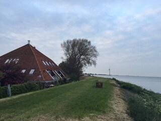 IJsselmeer Lake Side