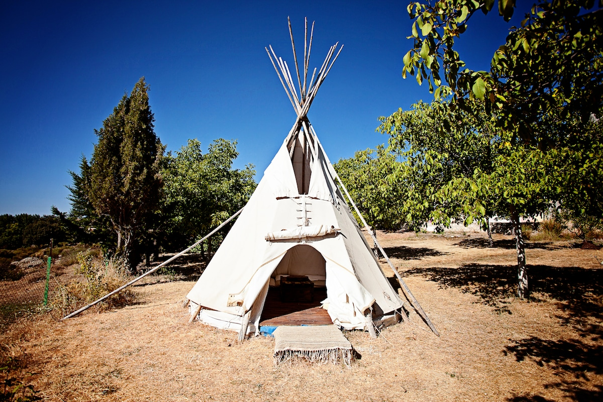 Amazing tipi Sioux-Lakota