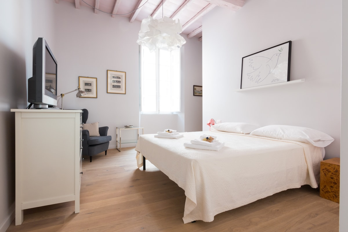 Ideal Apartment Navona Square