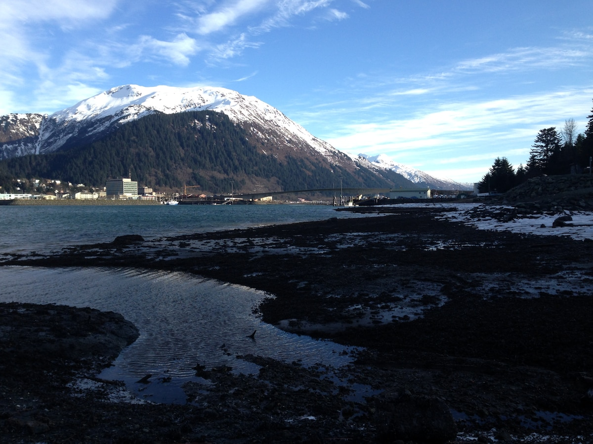 View of downtown Juneau from our house.