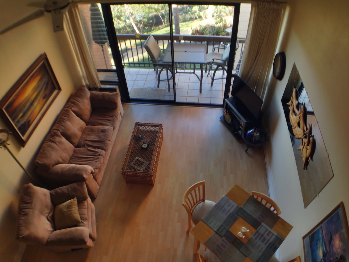 Living room and lanai from above.