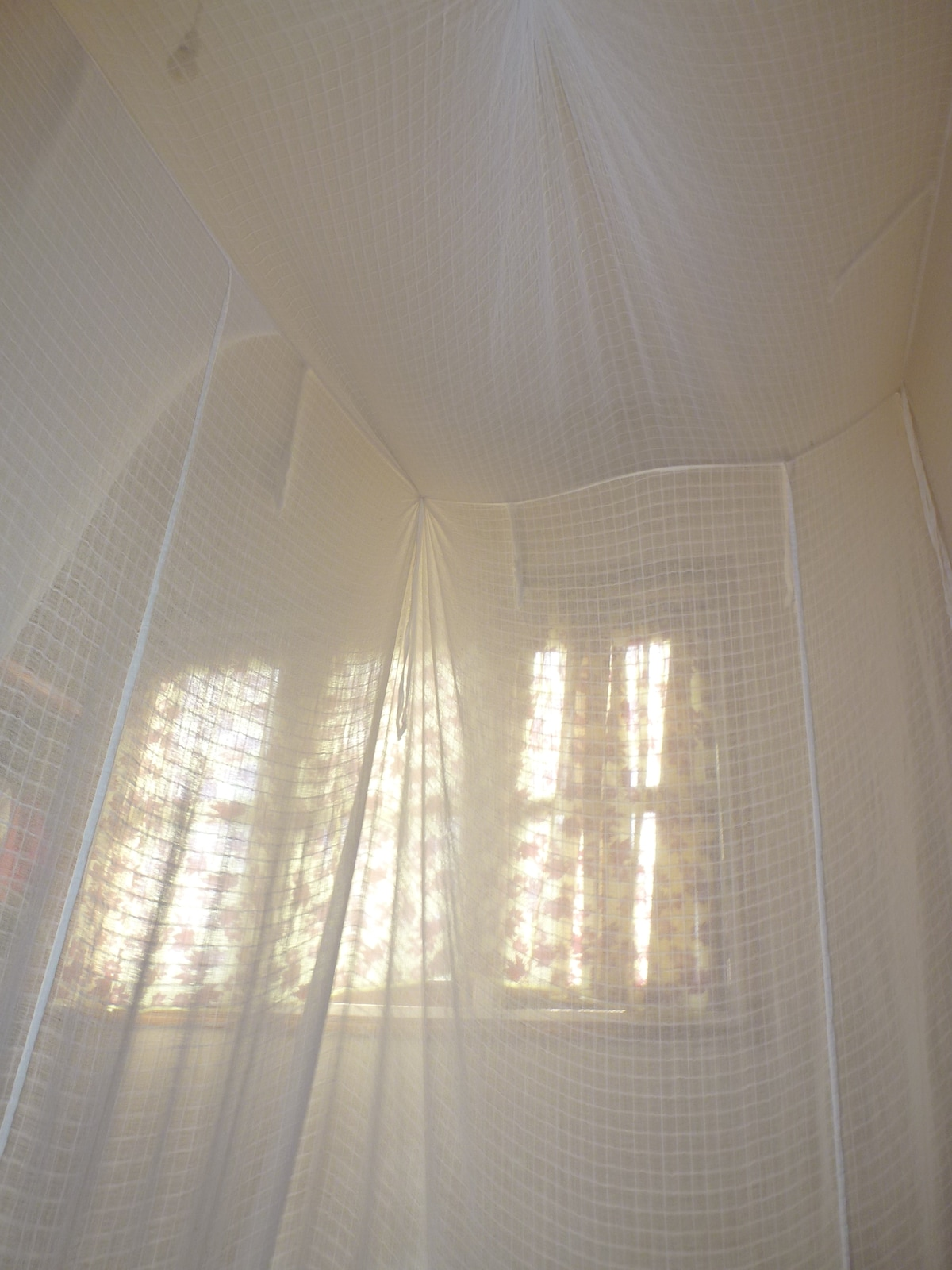 Rise and shine to the sun filtering through your mosquito net!