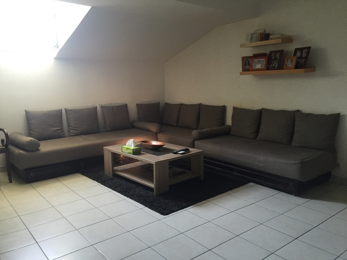 Appartement Place Massena, centre