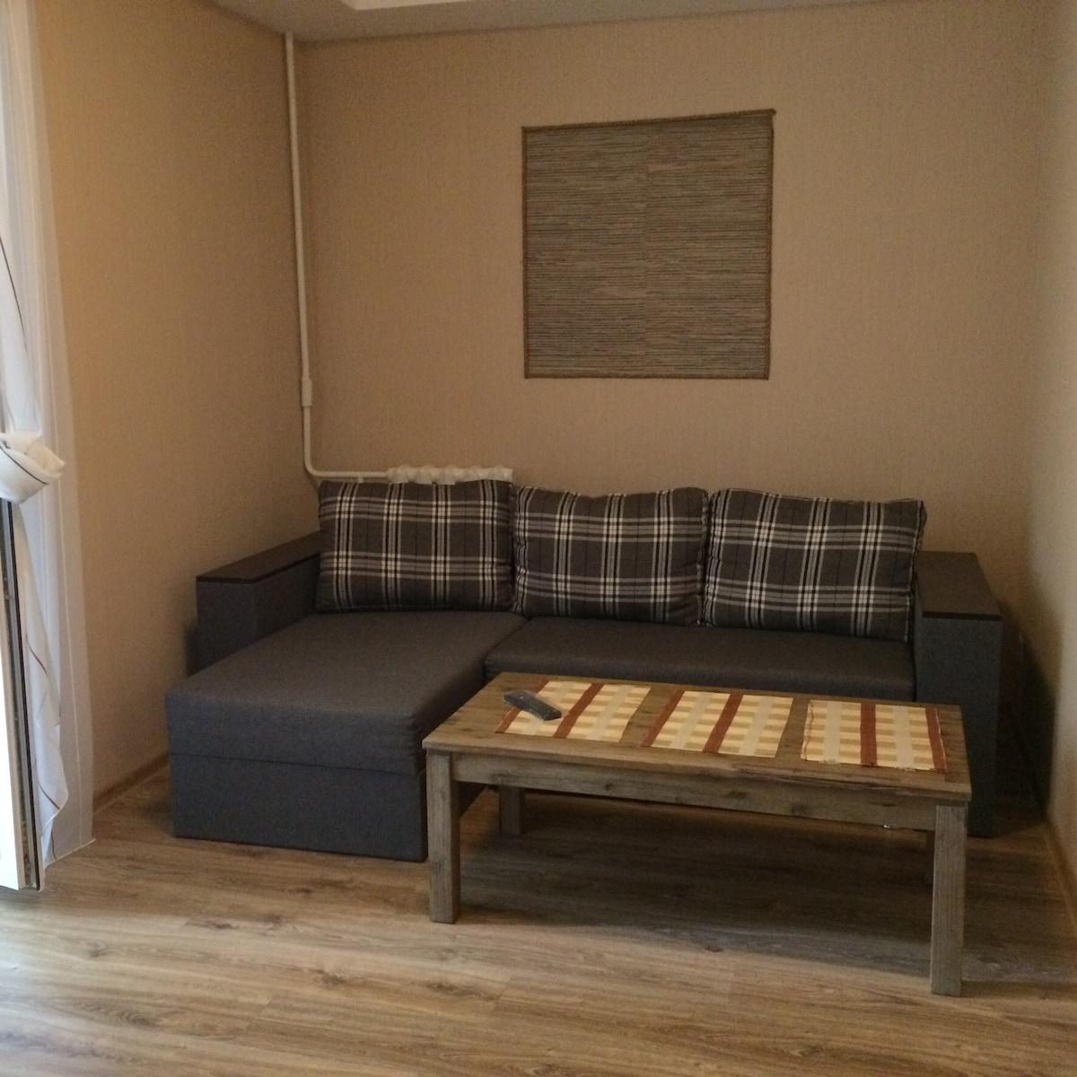 Уютная двухкомнатная квартира-люкс