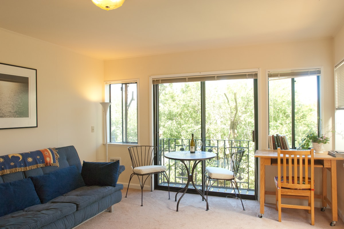 west view of living room/writing desk/balcony