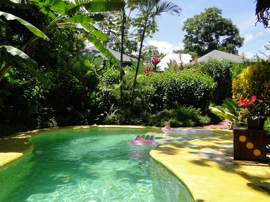 Swimming pool / Piscine / Piscina