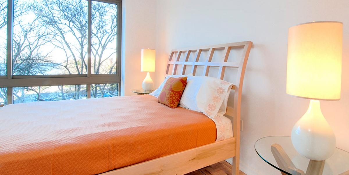 Roosevelt Island - Luxury Apartment