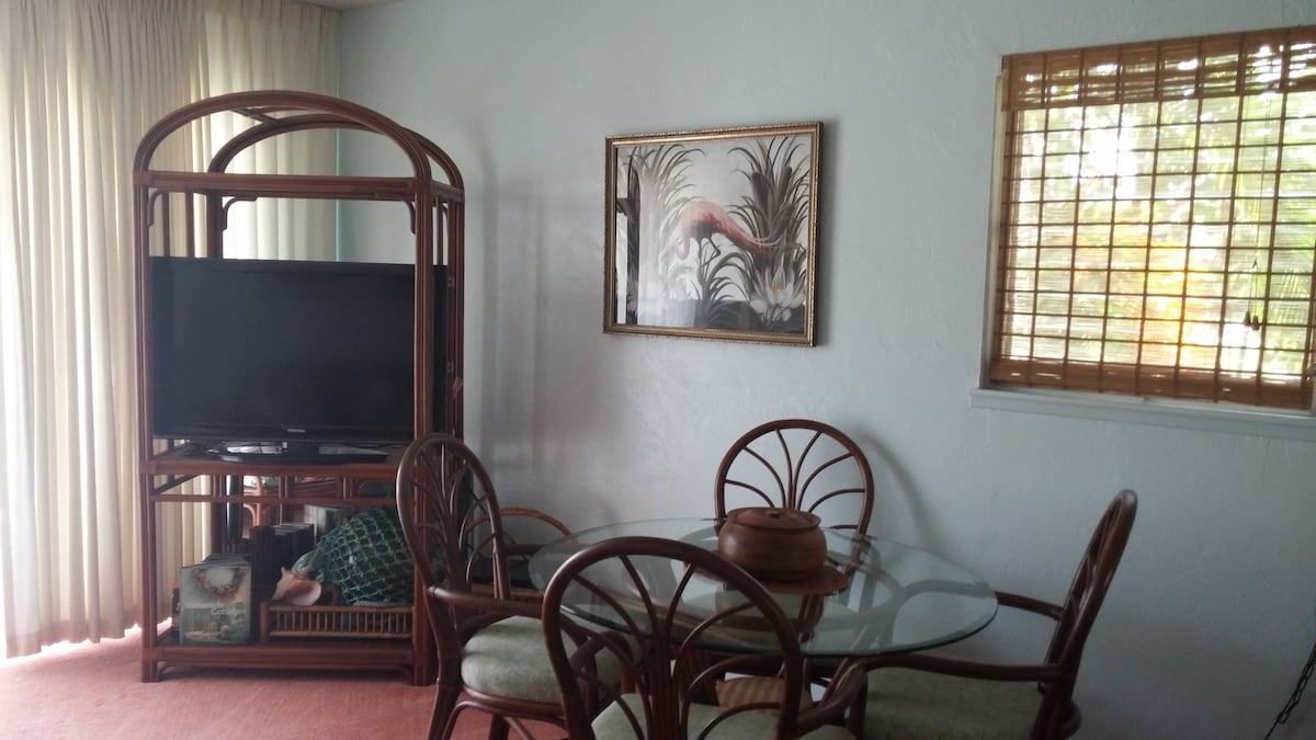 Large flatscreen TV with DVD and  HDMI/media cable(s).