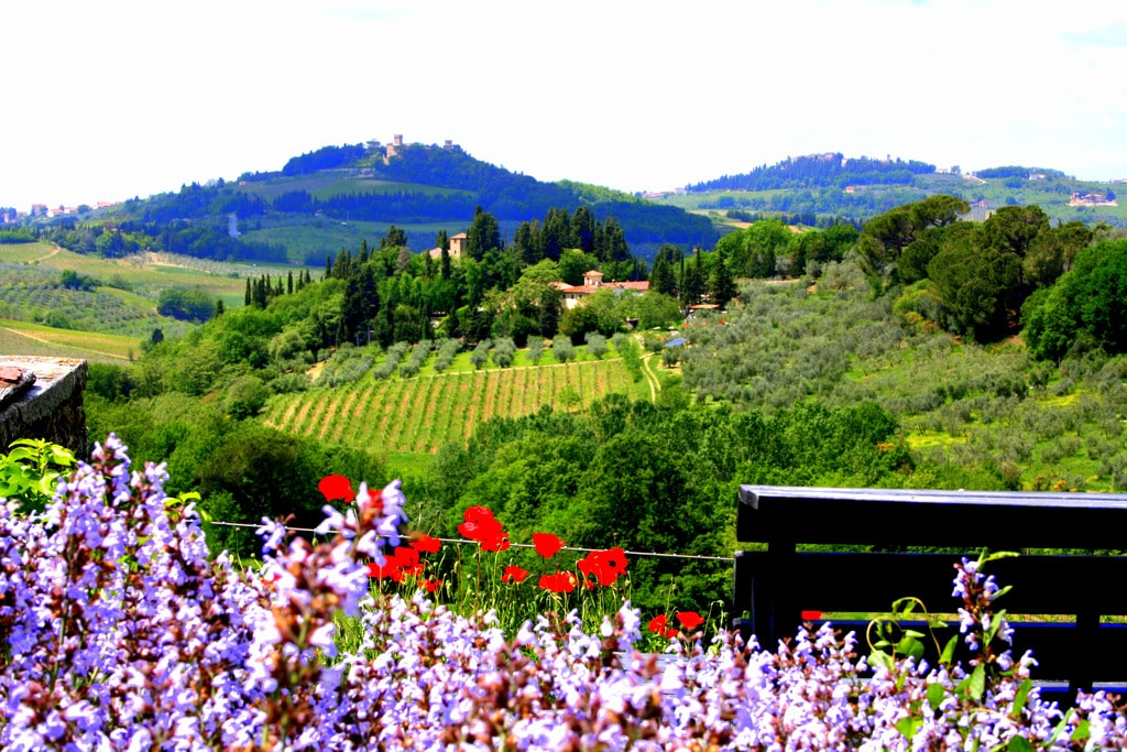 relax in the garden with tuscan view