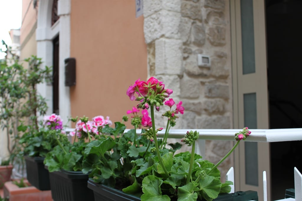 Eleonora from Modica