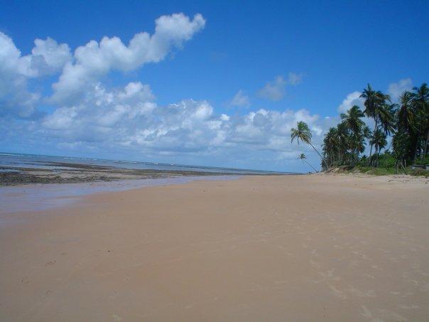 Ross From Mar Grande, Brazil