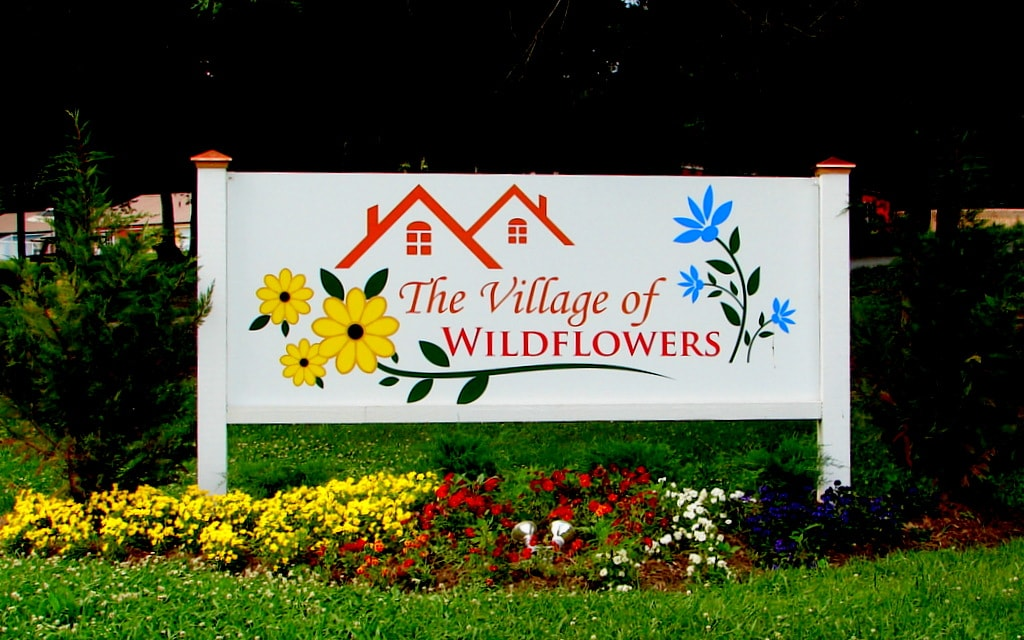 The Village Of Wildflowers From Flat Rock, NC