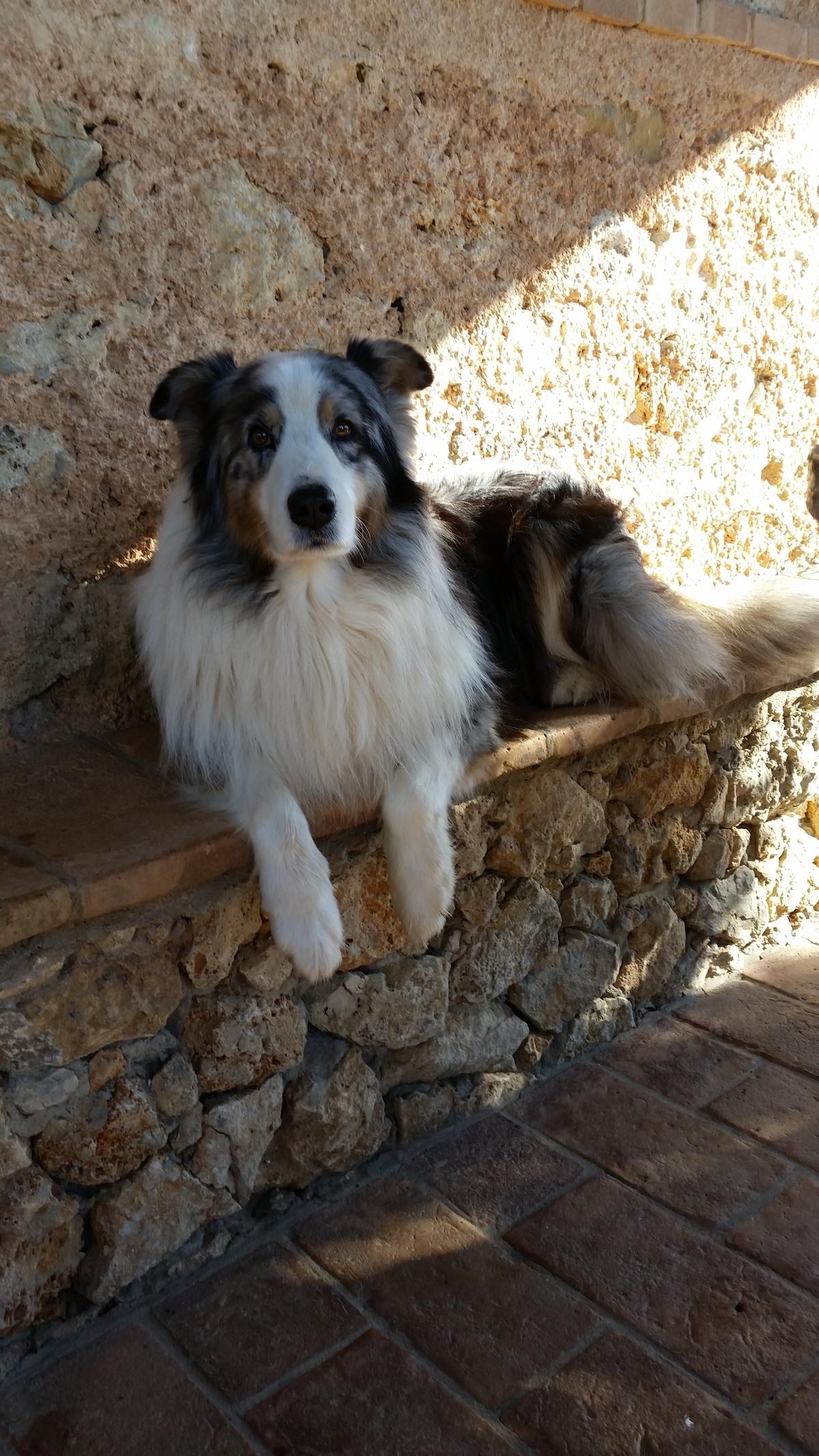 Ilaria from Santa Lucia