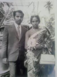 Basil From Kochi, India