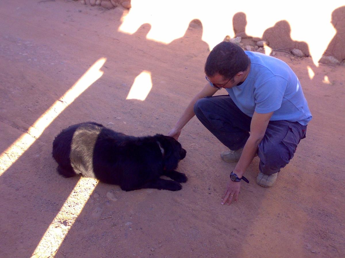 Azeddine from Marrakech