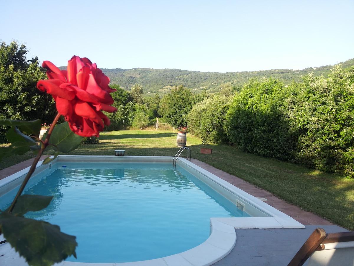 Ulisse From Cortona, Italy