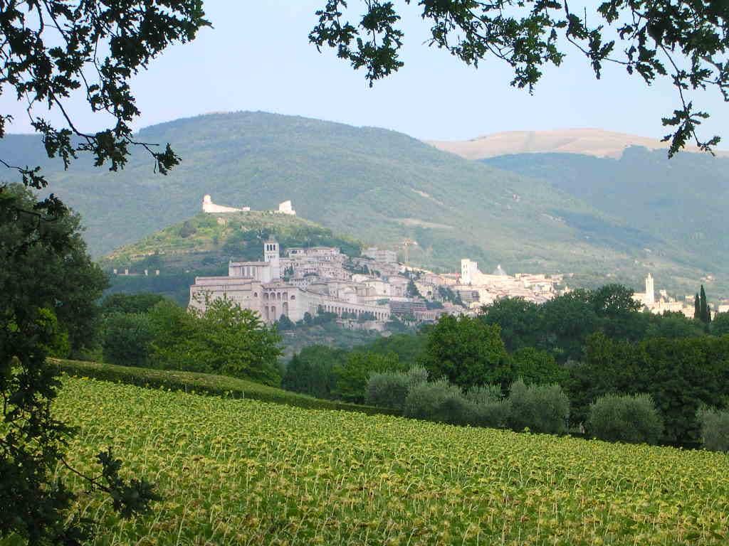 Antonio from Assisi