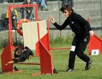Maria Grazia from Gattico