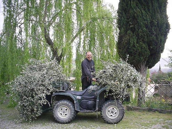 Stelio From Poggibonsi, Italy