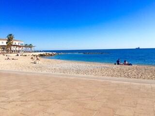 Amada From Palma, Spain