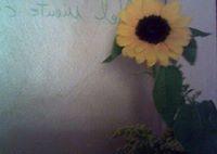 amo i fiori e la ricerca  del particolare le perso