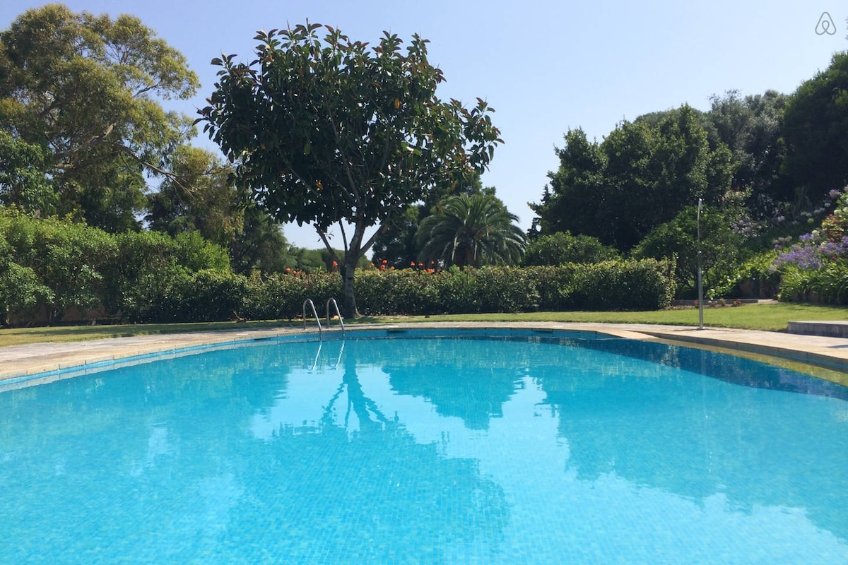 Portugal Hand Selected Holiday Homes from Colares