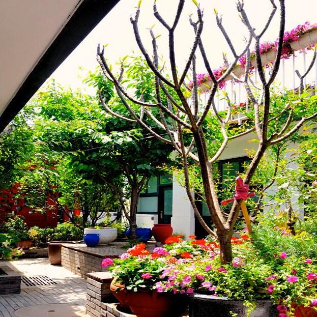 Peking Yard