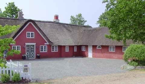 Monika from Rømø