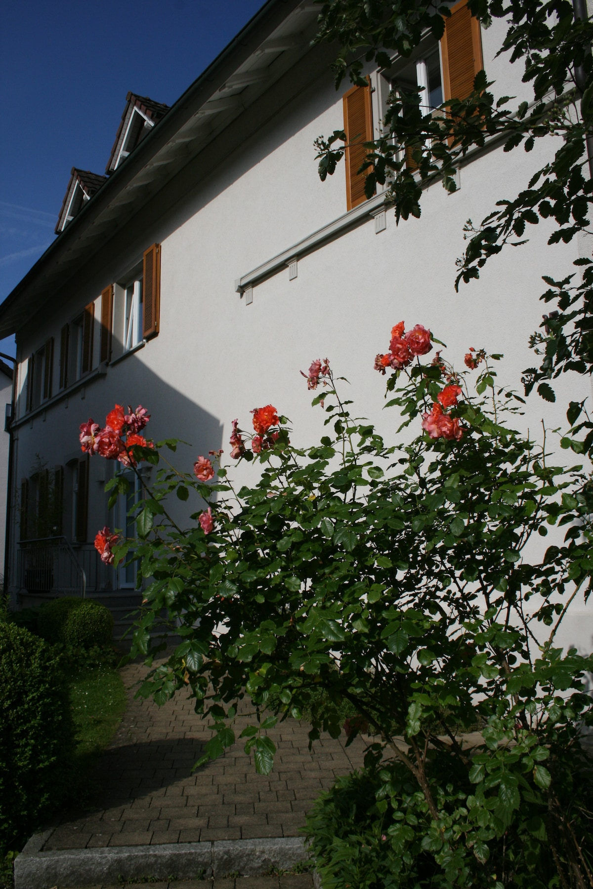 Elke Anna From Sigmaringen, Germany