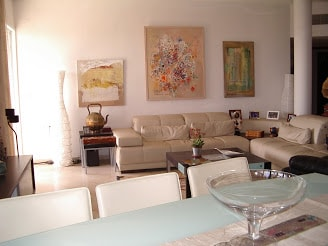 The living room - modern furniture and art